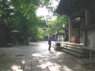 Image_honkakuji