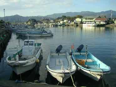 image_deva-boats.jpg