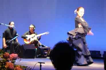 image_flamenco